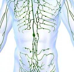 Lymphoedema Clinic